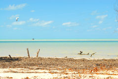 Holbox Island Caribbean Water Sports Stock Photo