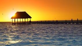Holbox island sunset beach in Mexico at Caribbean. Sea Quintana Roo at Mayan Riviera stock footage