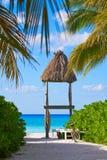 Holbox island palm tree huts Mexico. Holbox island tropical palm tree and huts in Mexico Royalty Free Stock Image