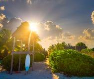 Holbox wyspy baywatch wierza i kipieli deska fotografia stock