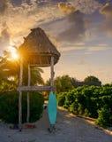 Holbox wyspy baywatch wierza i kipieli deska obraz stock