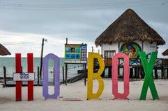 Holbox wyspy listy Zdjęcie Royalty Free