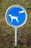 Hold dog on leash Stock Photo