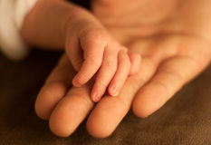 Hold fathers hand Stock Photos