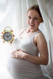 Holding alarm clock pregnant beautiful young lady Royalty Free Stock Image