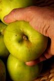 Holding an apple Stock Photos