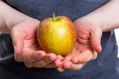 Holding an apple in both hands with a gray shirt on white background. Holding an apple in both hands with a gray shirt isolated on white background stock images