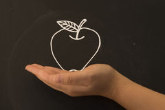 Holding a apple in hand Stock Image