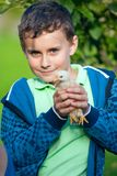 Holding baby chick royalty free stock images