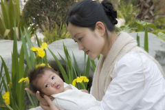 Holding Baby Close. Chinese mother and baby amongst the yellow irises of Spring Stock Photo