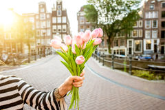 Holding tulips in Amsterdam. Holding a bouquet of pink tulips outdoors on the beautiful buildings background during the morning in Amsterdam city Royalty Free Stock Image