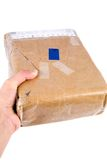 Holding brown paper package Stock Image