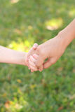 Holding childs hands in grass Royalty Free Stock Images