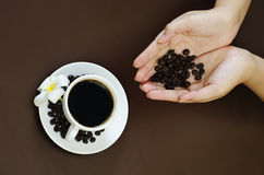 Holding coffee bean Royalty Free Stock Images