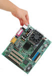 Holding Computer main-board Stock Image