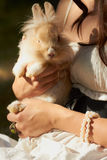Holding cute decorative bunny sitting. Young lady holding cutiest little fluffy domestic rabbit in her hands outdoors Royalty Free Stock Photo