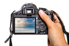 Holding DSLR camera Royalty Free Stock Photos