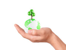 Holding a earth globe and tree in his hand Royalty Free Stock Image