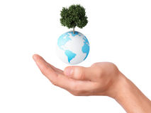 Holding a earth globe and tree in his hand Stock Images