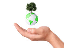 Holding a earth globe and tree in his hand Royalty Free Stock Photo