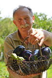 Holding eggplant Royalty Free Stock Photography