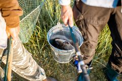 Holding fishing rods and bucket with fish outdoors. Men holding fishing rods and bucket with fresh caught fish outdoors. Close-up view with no face royalty free stock photos