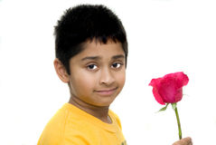 holding flower for valentine Stock Photos
