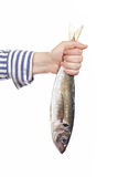 Holding a fresh fish Royalty Free Stock Photography