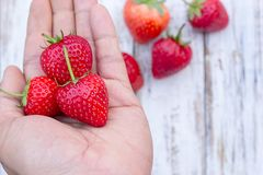 Holding fresh strawberry in hands. Close up holding fresh strawberry in hands with strawberry blur background on wood table Stock Images