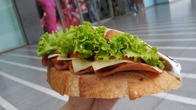Holding a fresh and yummy sandwich Stock Photography