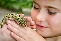 Holding Gecko. Child holding a Leopard Gecko Lizard royalty free stock photos