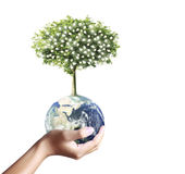 Holding a glowing earth (NASA) globe and tree in his hand Stock Photography