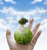 Holding a glowing globe and tree in hand Royalty Free Stock Photography