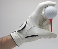 Holding golf ball Stock Photography