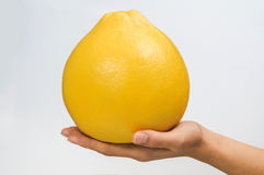 Holding a grapefruit Stock Photos