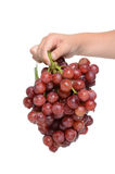 Holding Grapes Royalty Free Stock Image