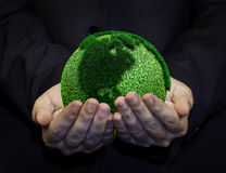 Holding a green earth. Hand holding a green earth Stock Photo