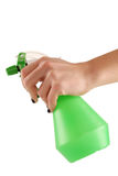 Holding a green flower spray Royalty Free Stock Photo