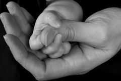 Holding hands. Father and child hold hands stock image