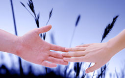 Holding hands 3 Royalty Free Stock Photography