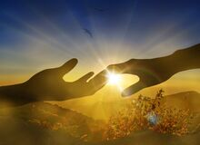 Holding hands against bright sun light rays, nature landscape