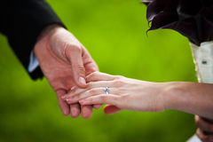 Holding hands Stock Image