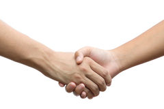 Hand holding hand isolated over white background - Royalty Free Stock Photo