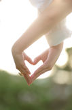 Holding hands heart,wedding theme, Royalty Free Stock Photos