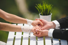 Holding Hands In Park Stock Photography