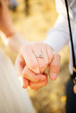 Holding hands.  Justmarried in love. Wedding beauty and feelings Stock Photos
