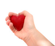 Holding heart. Hand holding a heart isolated on white Royalty Free Stock Photos