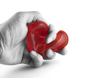 Holding Heart. A b/w hand holding a heart royalty free stock photo