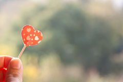 Holding heart Royalty Free Stock Images