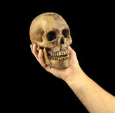 Holding human skull in hand. Conceptual image Stock Photo